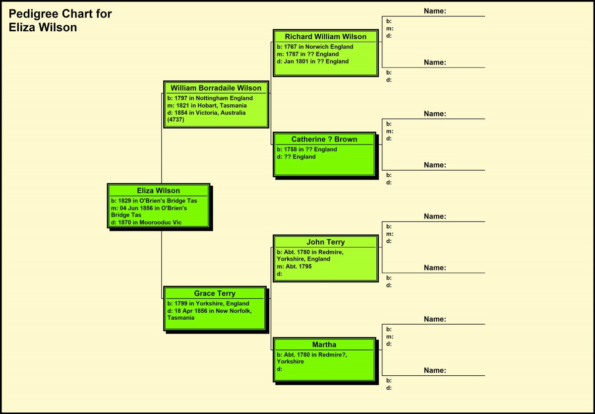 Pedigree-Chart-for-Eliza-Wilson